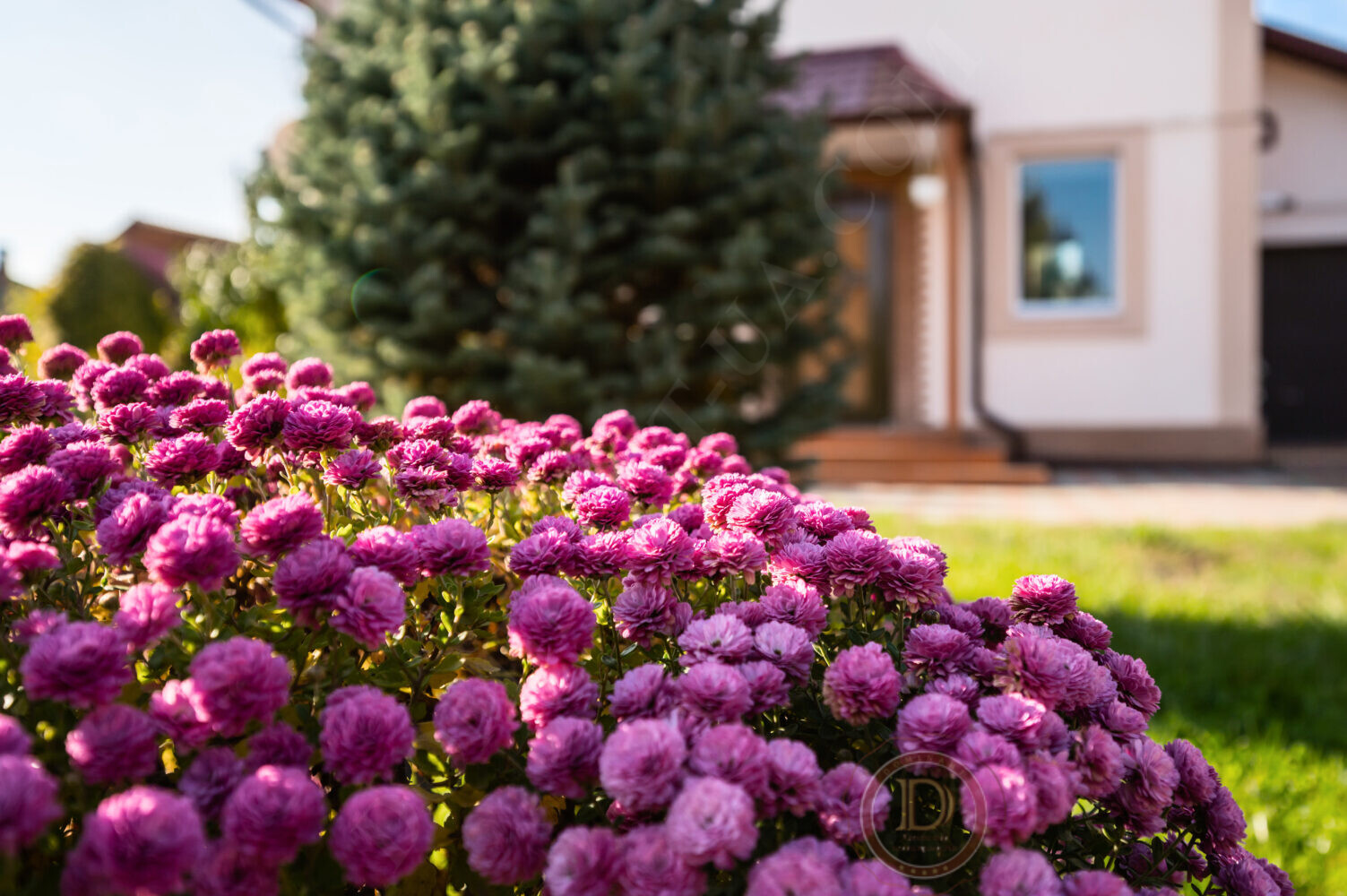 Продажа домов Запорожье